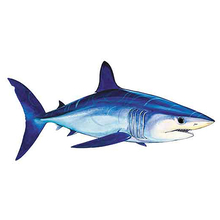 AFN Mako Shark Sticker