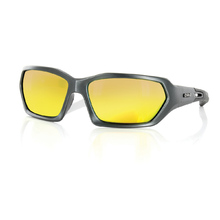 Carve Dealers Men's Titanium Revo Sunglasses