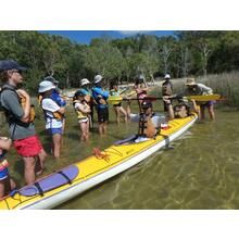 1 Day Noosa Everglades Self Guided Kayak Tour